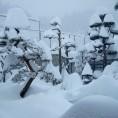 八右衛門庭園の雪