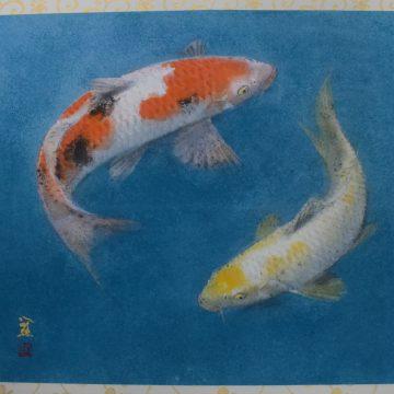 関城遊鯉2