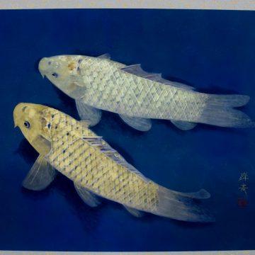 群青金銀双鯉
